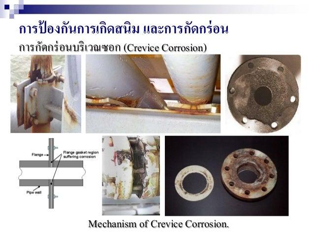 การป้ องกันการเกิดสนิม และการกัดกร่อน การกัดกร่อนบริเวณซอก (Crevice Corrosion) Mechanism of Crevice Corrosion.