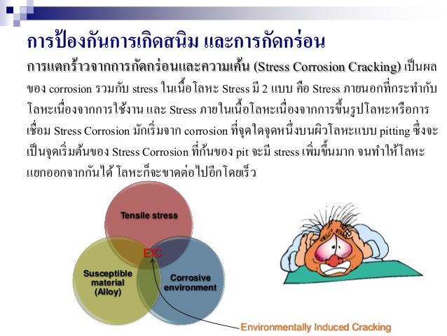 การป้ องกันการเกิดสนิม และการกัดกร่อน การแตกร้าวจากการกัดกร่อนและความเค้น (Stress Corrosion Cracking) เป็นผล ของ corrosion...