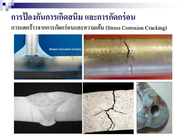 การป้ องกันการเกิดสนิม และการกัดกร่อน การแตกร้าวจากการกัดกร่อนและความเค้น (Stress Corrosion Cracking)