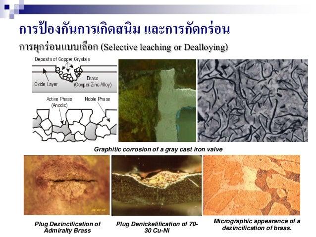 การป้ องกันการเกิดสนิม และการกัดกร่อน การผุกร่อนแบบเลือก (Selective leaching or Dealloying) Graphitic corrosion of a gray ...