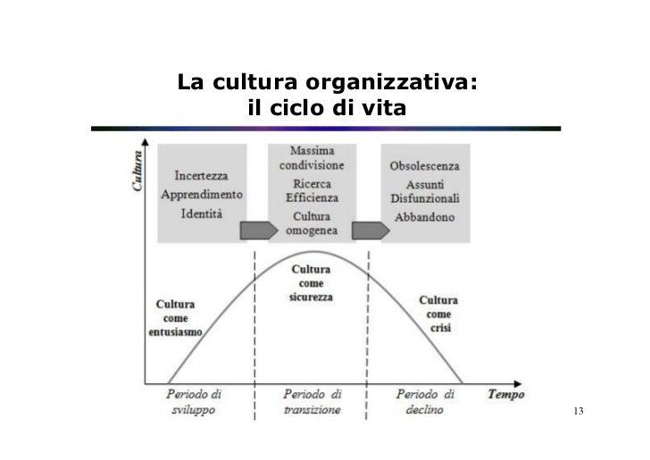 La cultura organizzativa:      il ciclo di vita                            13