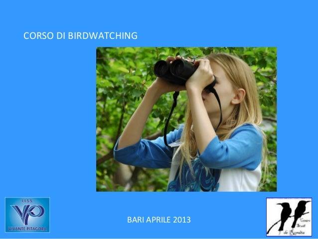 CORSO DI BIRDWATCHING                   BARI APRILE 2013
