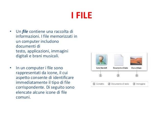 I FILE• Un file contiene una raccolta di  informazioni. I file memorizzati in  un computer includono  documenti di  testo,...