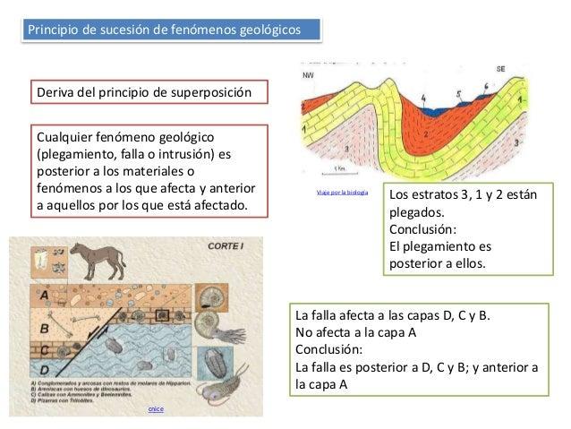 Principio de sucesión de fenómenos geológicos Deriva del principio de superposición Cualquier fenómeno geológico (plegamie...