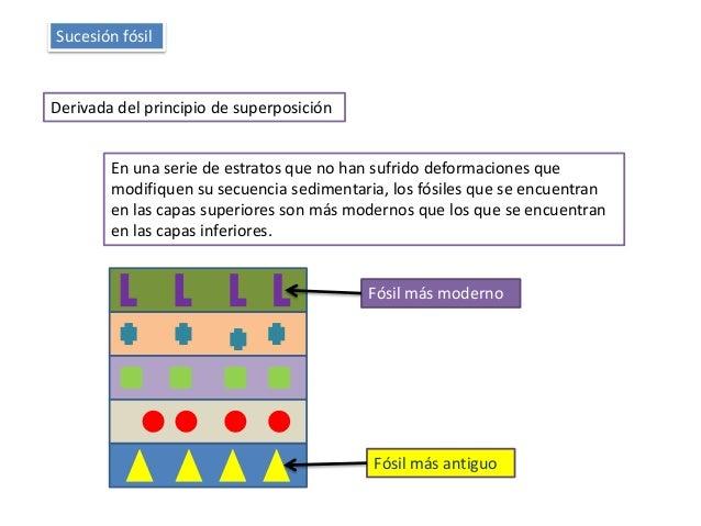 Sucesión fósil Derivada del principio de superposición En una serie de estratos que no han sufrido deformaciones que modif...