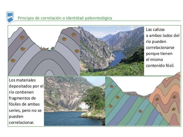 Principio de correlación o identidad paleontológica Las calizas a ambos lados del río pueden correlacionarse porque tienen...