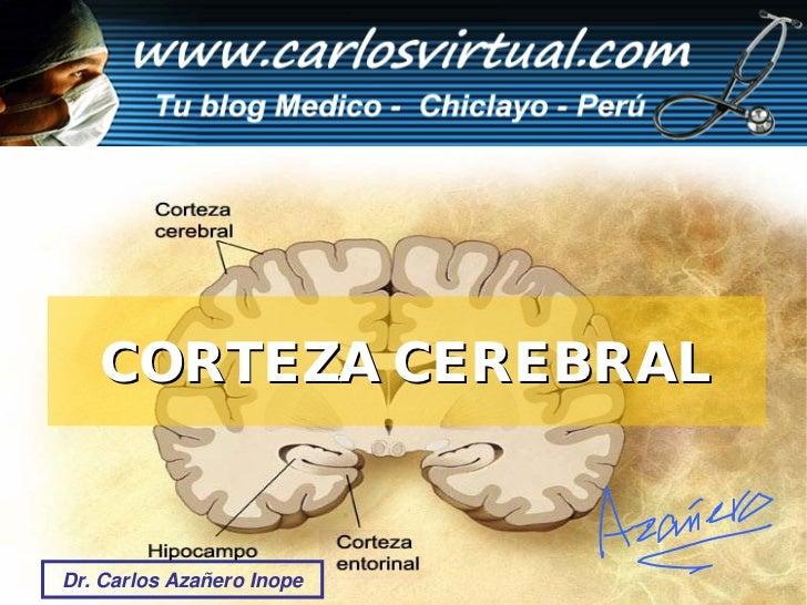 CORTEZA CEREBRAL                              Dr. Carlos Azañero Inope Dr. Carlos Azañero Inope