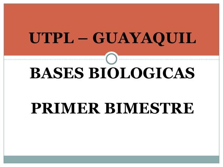 UTPL – GUAYAQUIL  BASES BIOLOGICAS  PRIMER BIMESTRE