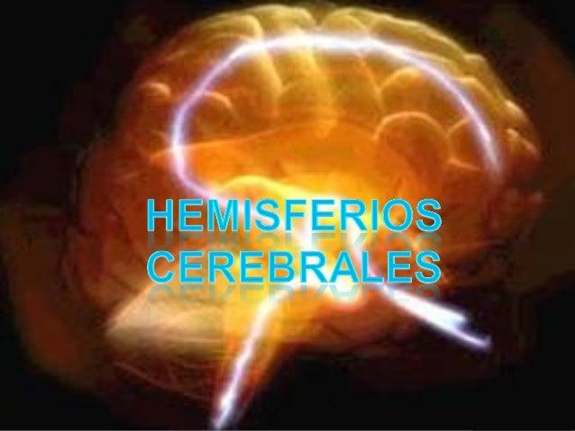 Corteza cerebral  Es una extensa capa de sustancia gris que cubre los hemisferios cerebrales.  Esta constituida por un a...