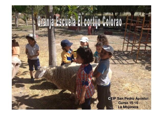 CEIP San Pedro Ápóstol Curso 15-16 La Mojonera
