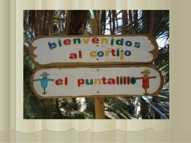Cortijo El Puntalillo 2013