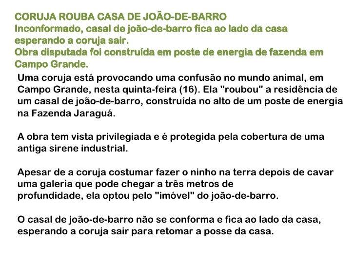CORUJA ROUBA CASA DE JOÃO-DE-BARRO Inconformado, casal de joão-de-barro fica ao lado da casa esperando a coruja sair.  Obr...