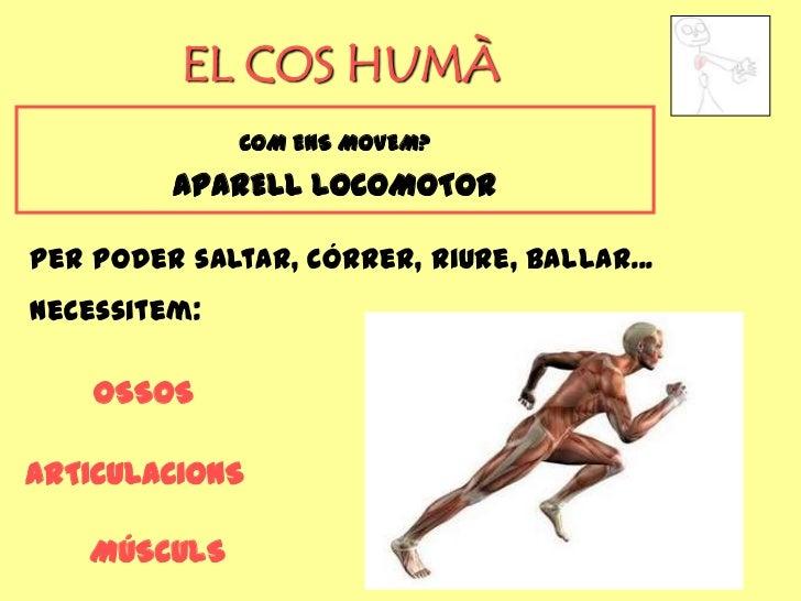 EL COS HUMÀ              COM ENS MOVEM?         APARELL LOCOMOTORPer poder saltar, córrer, riure, ballar...necessitem:    ...