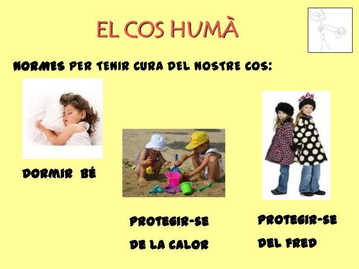 EL COS HUMÀNORMES PER TENIR CURA DEL NOSTRE COS: Dormir bé                Protegir-se       Protegir-se                de ...