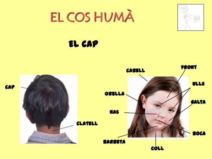 EL COS HUMÀ        EL CAP                                             front                             cabell            ...