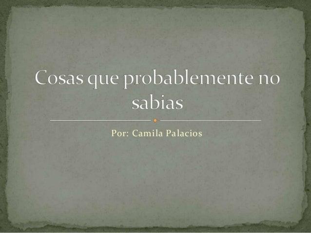 Por: Camila Palacios