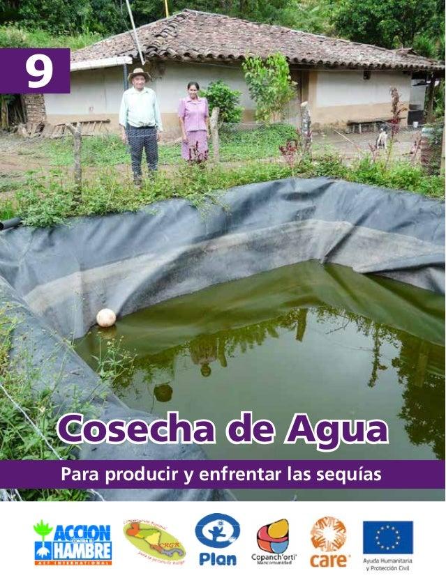 Para producir y enfrentar las sequías  9  Cosecha de Agua