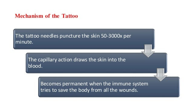 Mechanism of the Tattoo The tattoo needles puncture the skin 50-3000x per minute. The capillary action draws the skin into...