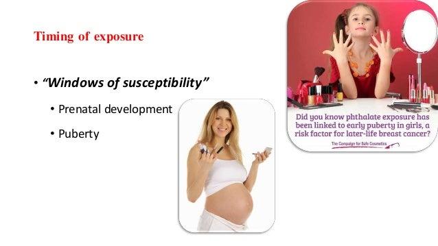 "Timing of exposure • ""Windows of susceptibility"" • Prenatal development • Puberty"