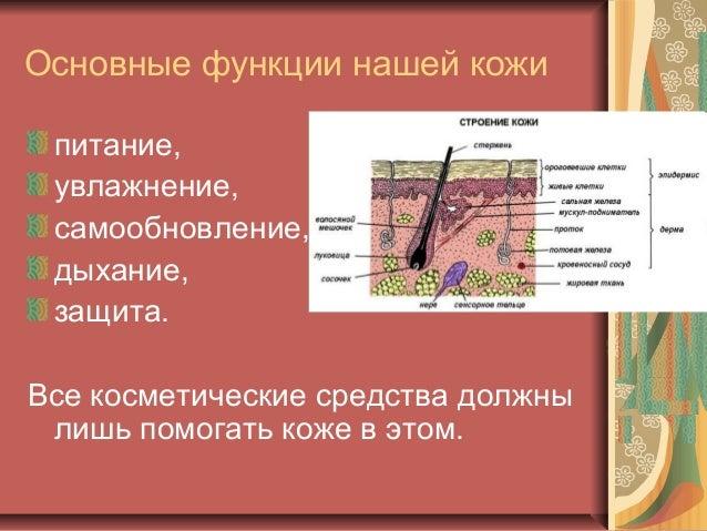 Природная косметика своими руками. Slide 2