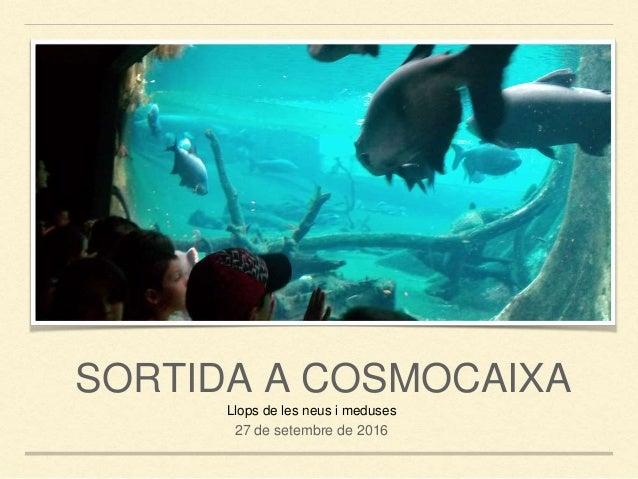 SORTIDA A COSMOCAIXA Llops de les neus i meduses 27 de setembre de 2016
