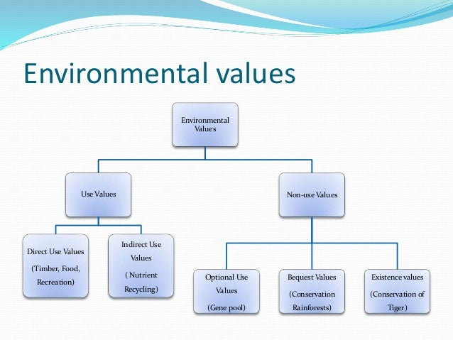 environmental values Environmental values introduces readers to these issues by presenting, and then challenging, two dominant approaches to environmental decision-making, one from environmental economics, the other from environmental philosophy.