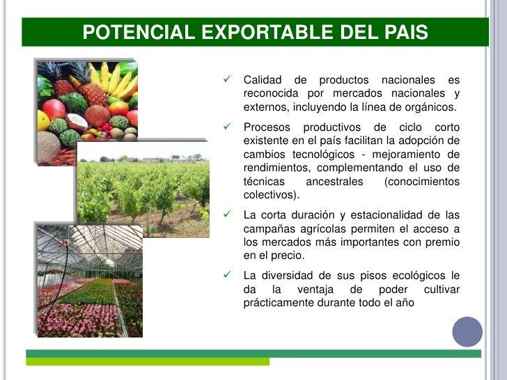 Productos medicinales naturales peruanos