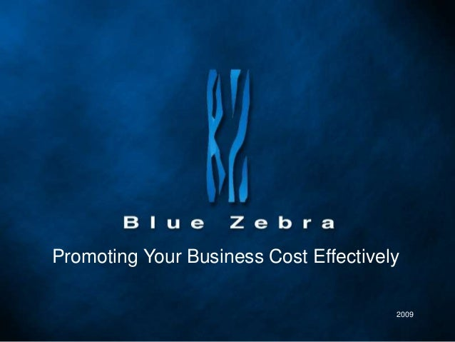 Promoting Your Business Cost Effectively 2009