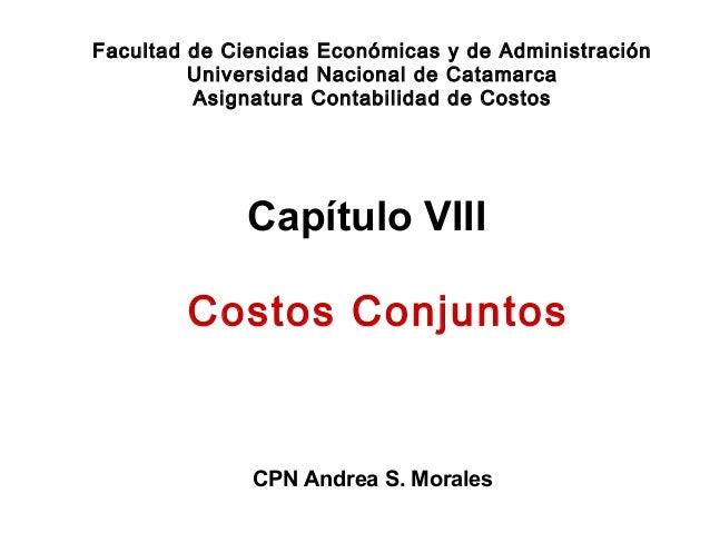 Capítulo VIII CPN Andrea S. Morales Facultad de Ciencias Económicas y de Administración Universidad Nacional de Catamarca ...