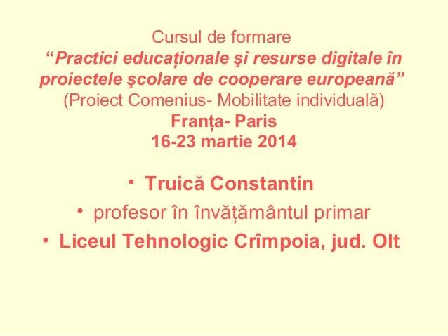 """Cursul de formare """"Practici educaţionale şi resurse digitale în proiectele şcolare de cooperare europeană"""" (Proiect Comeni..."""