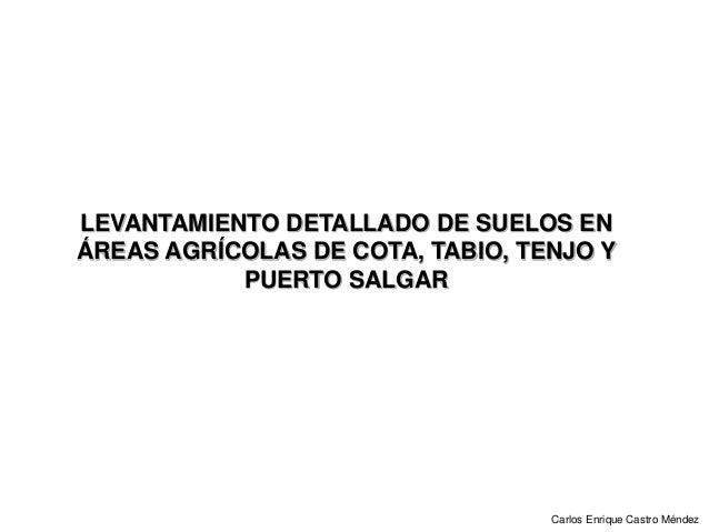 LEVANTAMIENTO DETALLADO DE SUELOS EN ÁREAS AGRÍCOLAS DE COTA, TABIO, TENJO Y PUERTO SALGAR Carlos Enrique Castro Méndez