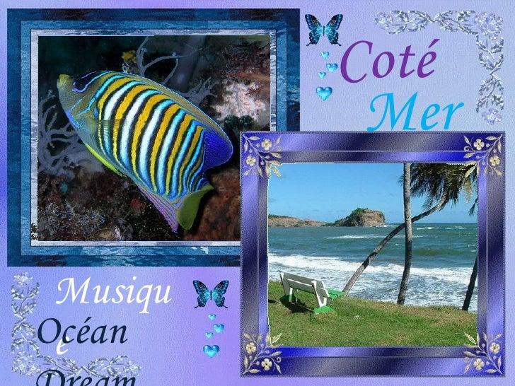 Coté Mer Musique Océan Dream