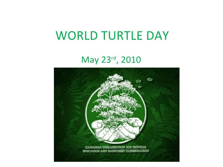 WORLD TURTLE DAY May 23 rd , 2010