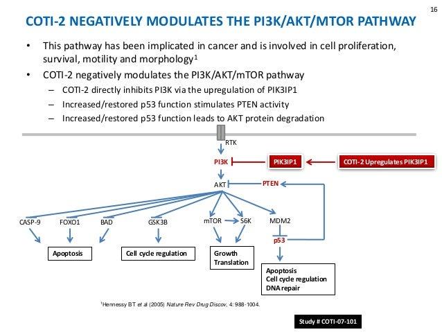 Coti 2 Reactivating Mutant P53