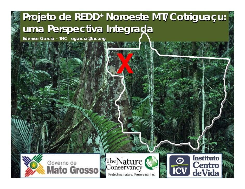 Projeto de REDD+ Noroeste MT/Cotriguaçu:uma Perspectiva IntegradaEdenise Garcia – TNC egarcia@tnc.org                     ...