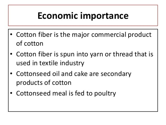 Cottonseed Oil Cake Uses