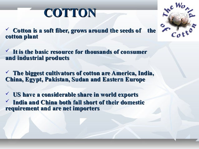 COTTON  Cotton is a soft fiber, grows around the seeds of thecotton plant It is the basic resource for thousands of cons...