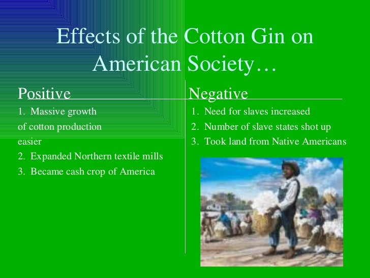 effects of the cotton gin Lesson plan: overview the impact of the cotton gin subtitle 1: what difference did the cotton gin make to the south.