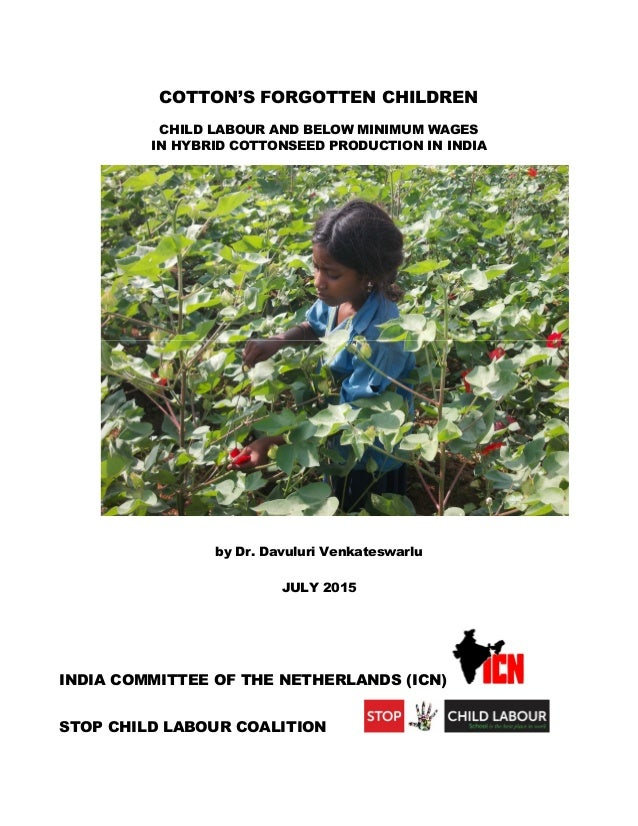 COTTON'S FORGOTTEN CHILDREN CHILD LABOUR AND BELOW MINIMUM WAGES IN HYBRID COTTONSEED PRODUCTION IN INDIA by Dr. Davuluri ...