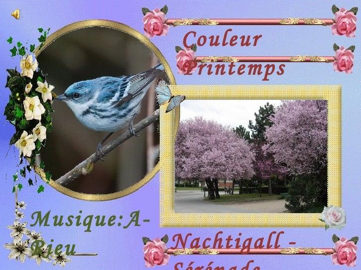 Couleur  Printemps Musique:A-Rieu Nachtigall - Sérénade