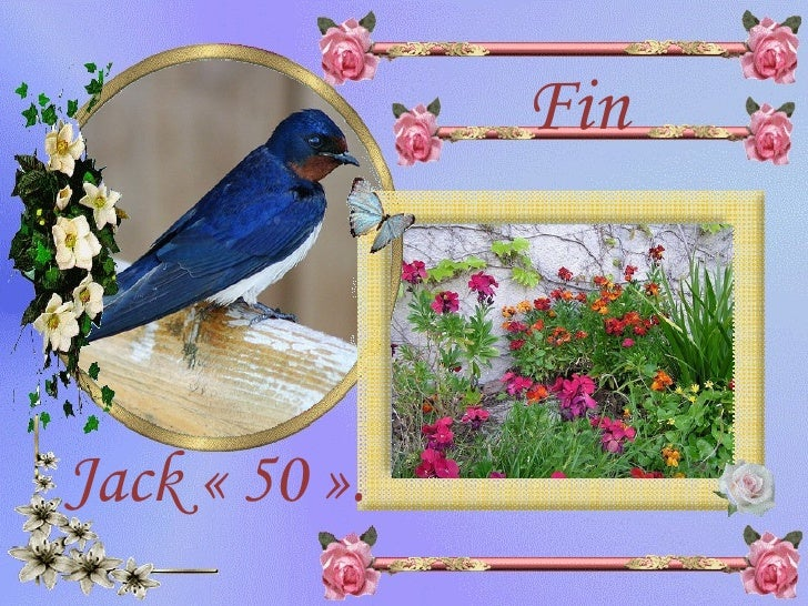 Fin Jack «50».