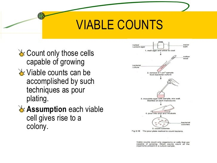 total and viable counts of microorganisms biology essay Question bank a-a+ english  question total 6 biology (gce as/a) - higher tier  the serial dilution essay was rarely attempted and was often very poor and vague.