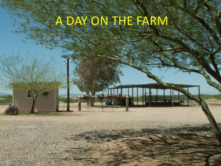 A DAY ON THE FARM<br />