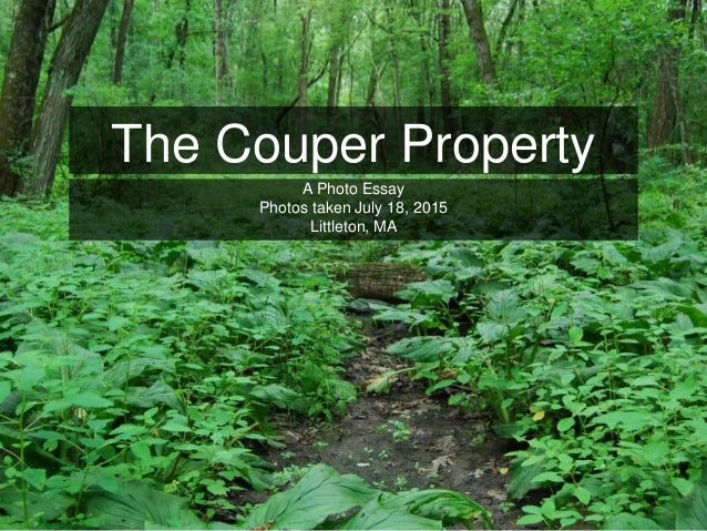 The Couper Property A Photo Essay Photos taken July 18, 2015 Littleton, MA