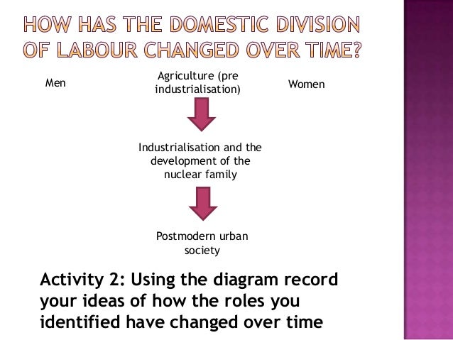 durkheims social division of labour