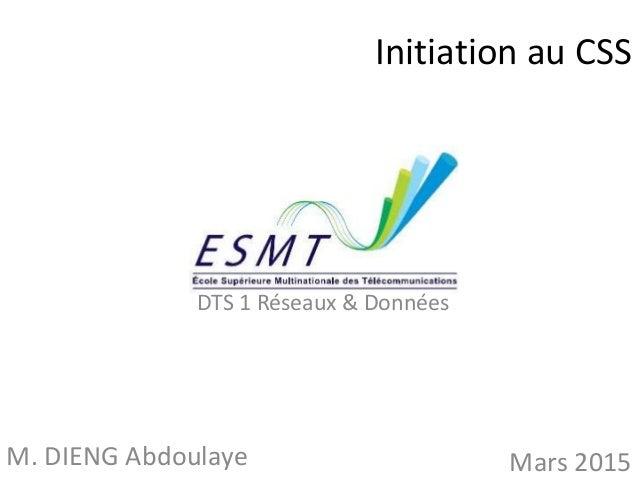 Initiation au CSS M. DIENG Abdoulaye Mars 2015 DTS 1 Réseaux & Données