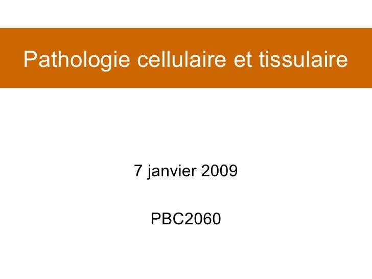 Pathologie cellulaire et tissulaire 7 janvier 2009 PBC2060