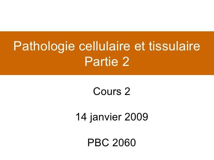 Pathologie cellulaire et tissulaire Partie 2 Cours 2 14 janvier 2009 PBC 2060