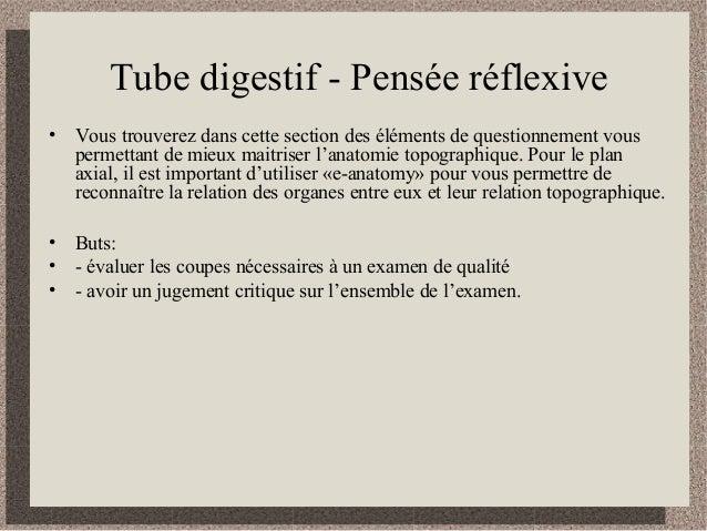 Tube digestif - Pensée réflexive • Vous trouverez dans cette section des éléments de questionnement vous permettant de mie...