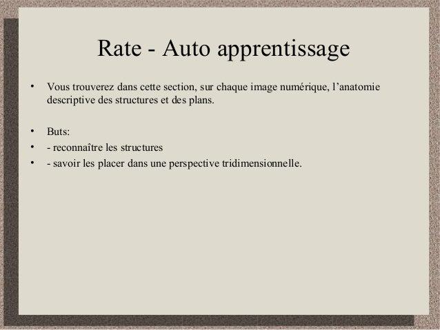 Rate - Auto apprentissage • Vous trouverez dans cette section, sur chaque image numérique, l'anatomie descriptive des stru...